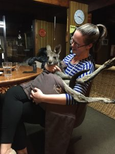 Snuggling a 2 year old baby kangaroo at an airbnb along the great ocean road.