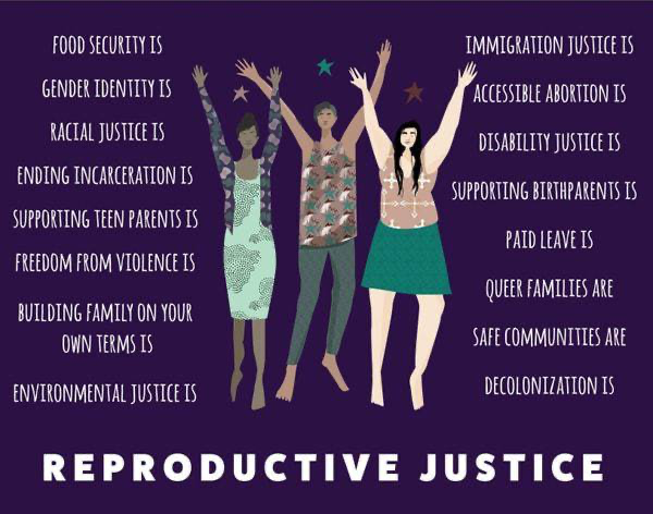 One of my favorite graphics showing the multi-faceted and intersectional nature of reproductive justice