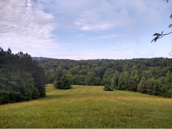 My favorite running spot (Merritt's Pasture)!
