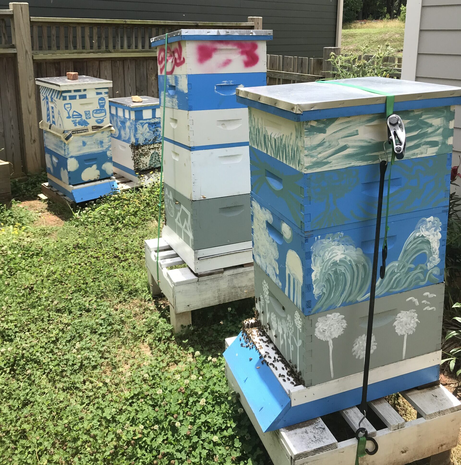 Beekeeping boxes.