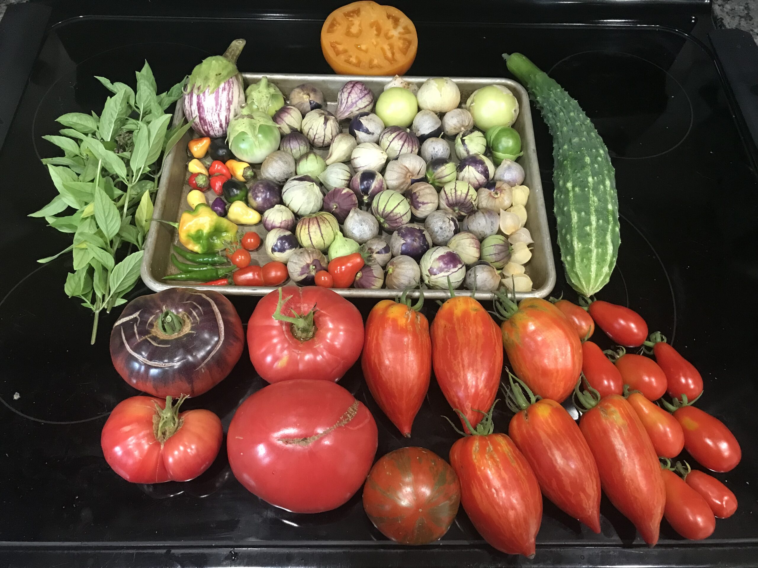 Picture of a bunch of different vegetables picked from the garden.